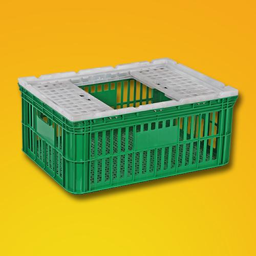Caixa Plástica 354