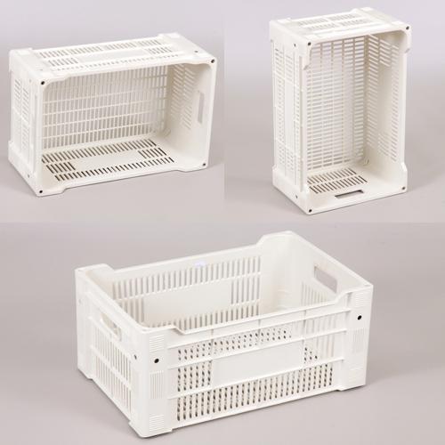 caixa plastica 1016 marfinite